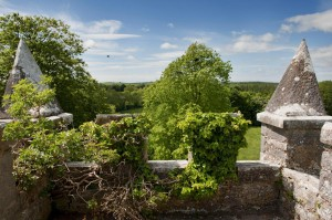 COI Kilkishen top of tower cracked by ivy